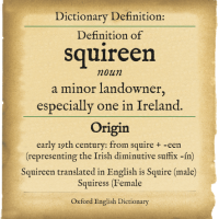 Definition Of Squireen In English2 200X200