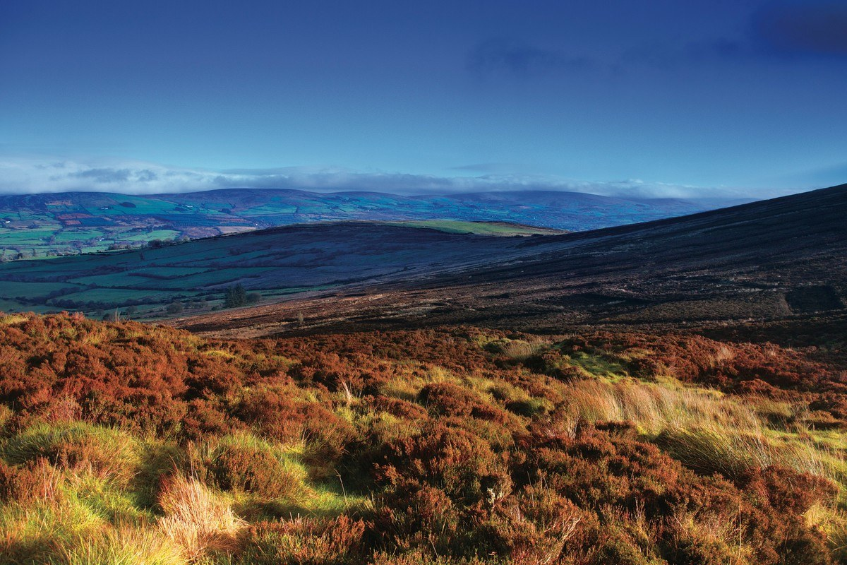 17795 The Sperrins