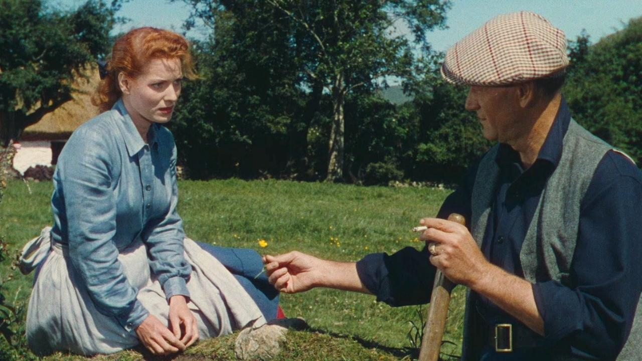 Image result for the quiet man
